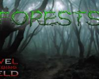 Level Playing Field: Forests